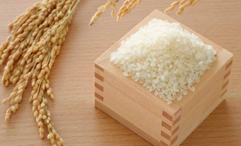 お米の味にもこだわり、新潟産こしひかりを使用